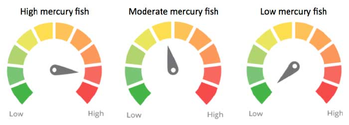 ingredient dials for mercury levels in fish