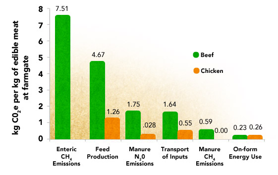 Emissions from Beef and Chicken Production
