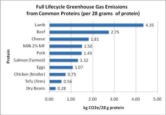 full_lifecycle_greenhouse_gas_emissions