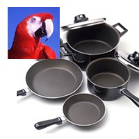 Teflon and other non-stick pans kill birds | PFCs: Global
