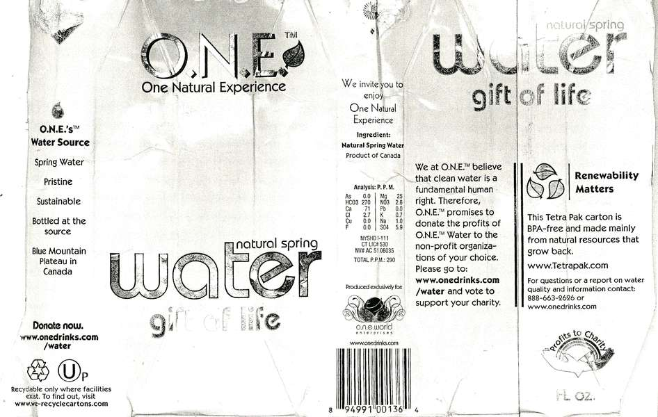 O.N.E. One Natural Experience Natural Spring Water Label