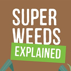 Rise of Superweeds