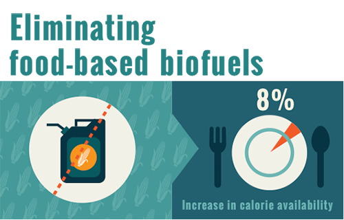 Eliminating food-based biofuels
