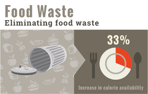 Eliminating Food Waste