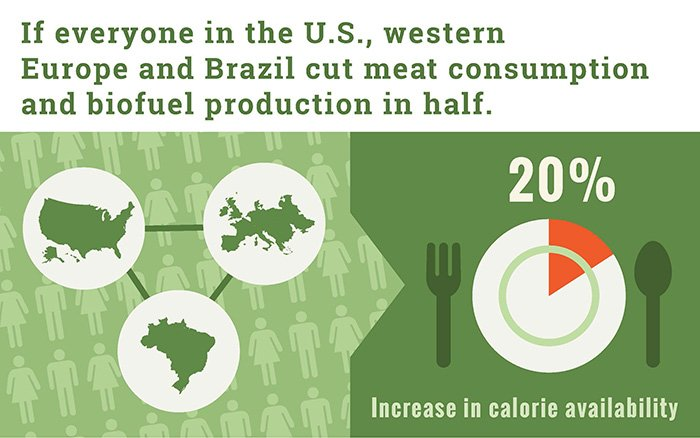 If everyone in the U.S., western Europe and Brazil cut meat consumption and biofuel procduciton in half.