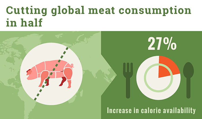 Cutting global meat consumption in half