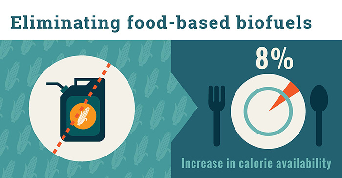 Eliminating food-based biofuels