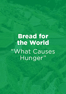 Link to Report: What Causes Hunger - Bread for the World
