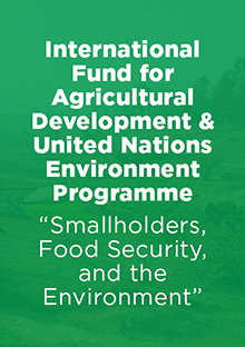 Link to Report: Smallholders, Food Security, and the Environment - International Fund for Agricultural Development & Uniter Nations Environment Programme