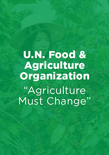 Link to Report: Agriculture Must Change - U.N. Food & Agriculture Organization