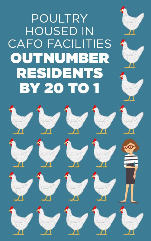 Poultry housed in CAFO facilities outnumber residents 20 to 1 in North Carolina
