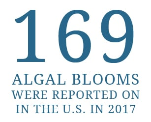 169 Algal blooms were reported on in the U.S. in 2017