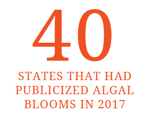40 States that had publicized algal blooms in 2017
