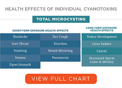 Health Effects of cyanotoxins