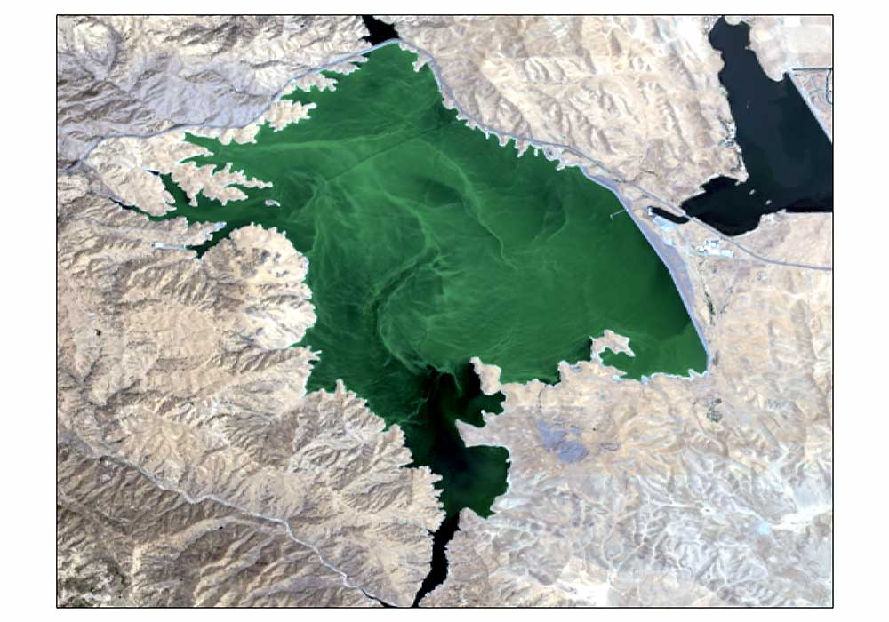 Across u s toxic blooms pollute lakes for San luis reservoir fishing report 2017